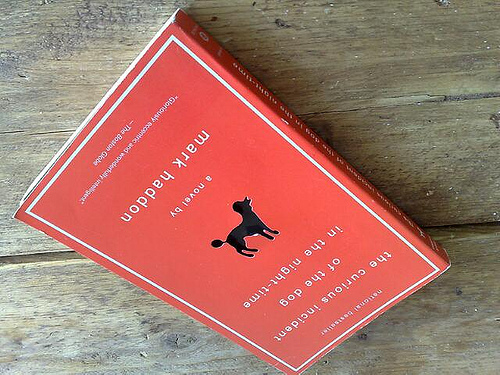 Gelezen: the curious incident of the dog